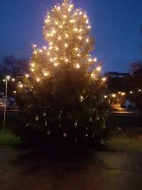 Weihnachtsschmuck am Tannenbaum