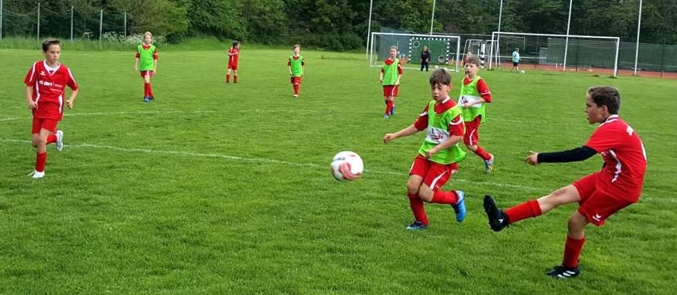 TuSpo Holzhausen Jugendfußball E-Jugend